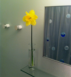 daffodil-in-bathroom