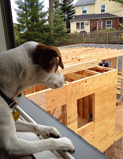 jack-watching-the-construction