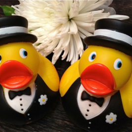 wedding-ducks