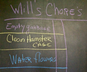 will's-chores