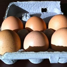 piper's eggs