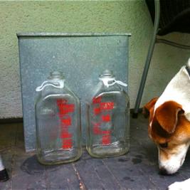 jack-and-glass-milk-bottles