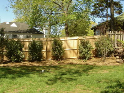 grass-and-fence-in-yard