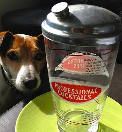 vintage-cocktail-shaker