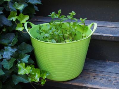 gardening-in-tubtrug