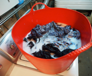 laundry-soaking-in-tubtrug