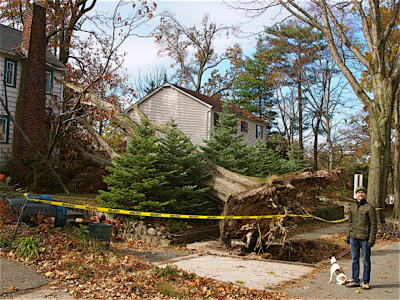 hurricane-sandy-damages