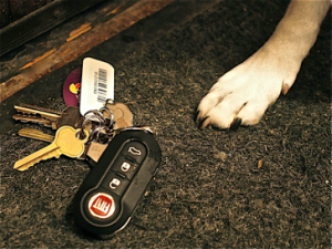ming's-keys