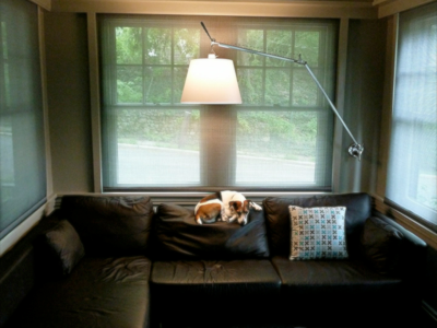 jack-lounging-on-couch
