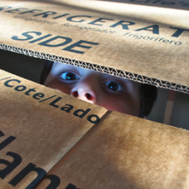 will-in-box