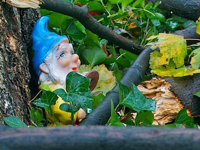 gnome-under-branches