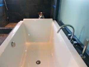 jack-and-bathtub