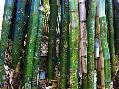 bamboo-art-carvings