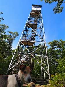 jack-and-lookout-tower