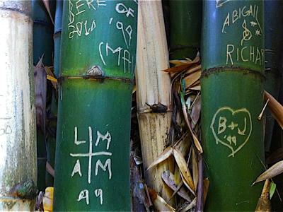 bamboo-carvings