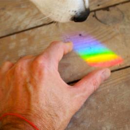 rainbow-on-floor